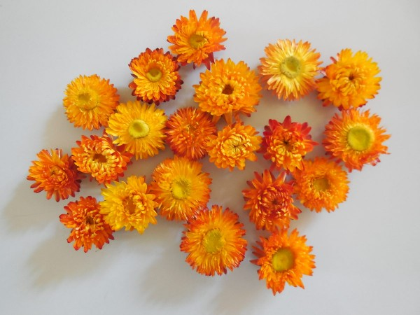 Strohblumenköpfe, Orange. 20 Stück, 3,5-5cm