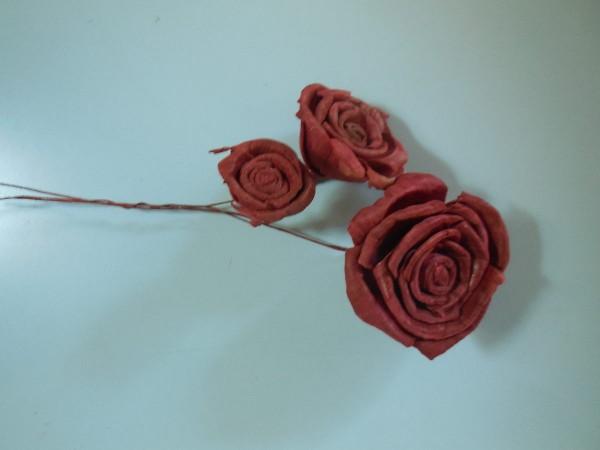 Schilfblumen, 3Stk, Bordeaux,Z232b