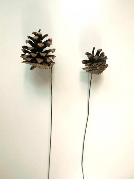 Kiefernzapfen/ 3 cm +Draht, Z341