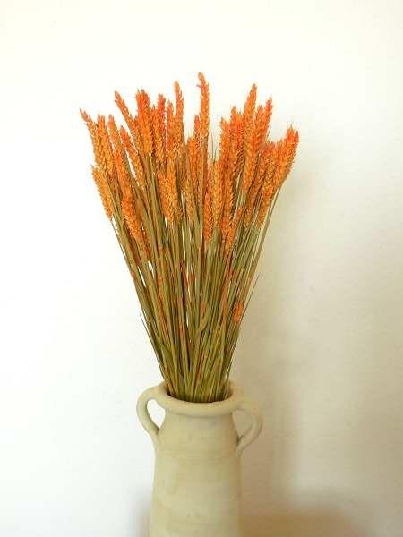 Weizen/ Orange, ein halbes Bund, Z359a