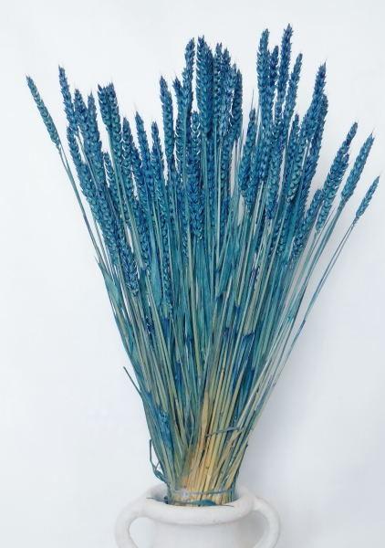 Weizen/ Blau, ein halbes Bund, Z616a