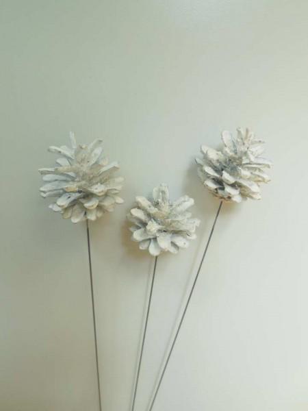 Kiefernzapfen/ Weiß, 5 cm, Z390