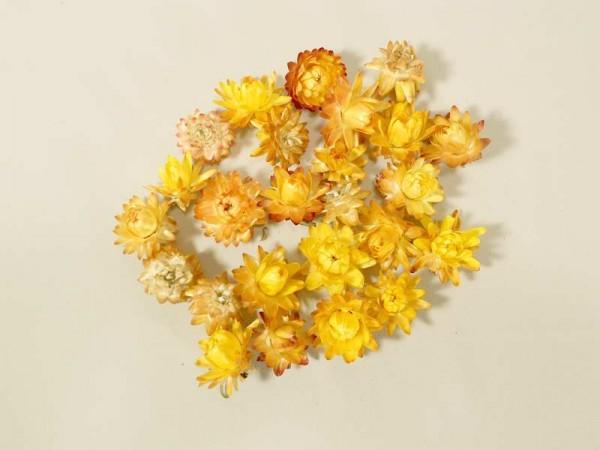 Strohblumen/ klein, gelb, 2- 3cm