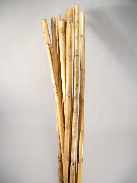 Bambus/ Natur, Z223