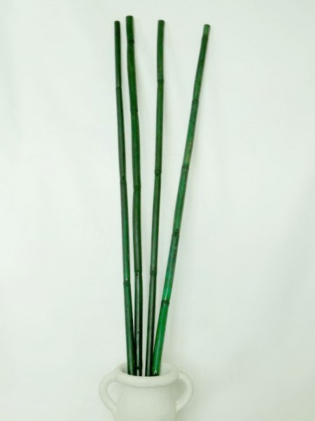 Bambus/ Grün, Z613