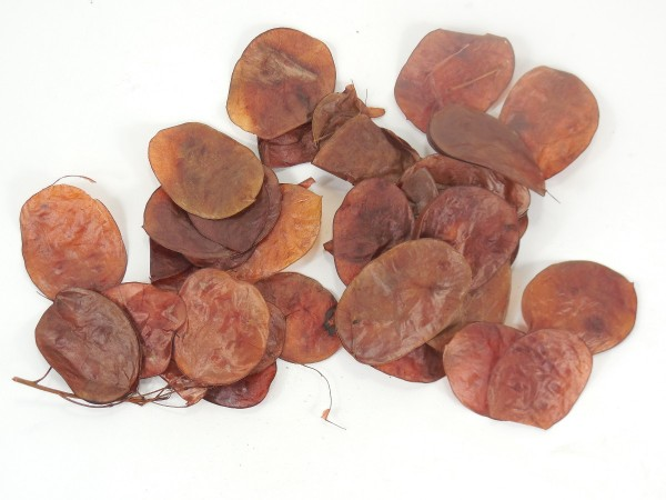 Silbertaler,Braun gefärbt