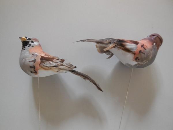 Vogel, 10cm, Z207a