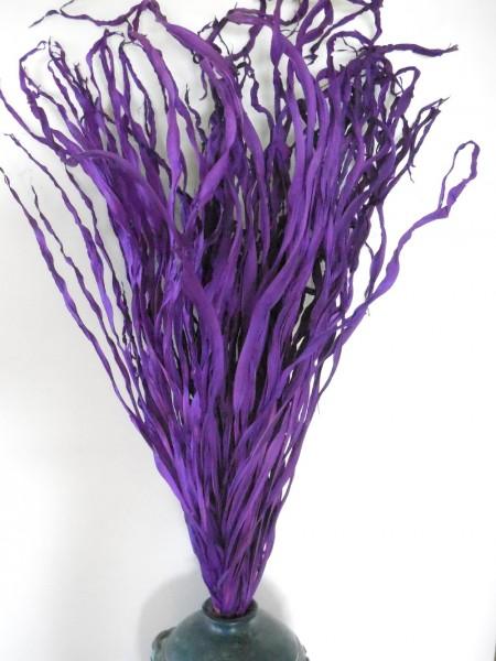 Palmgras, Lila,70 cm, Z634